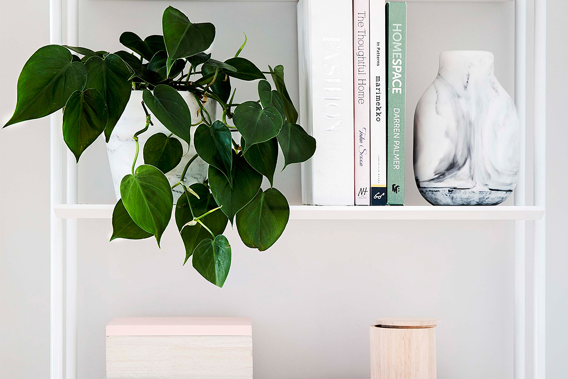 10 Ways To Decorate With Plants On Shelves Home Beautiful Magazine Australia