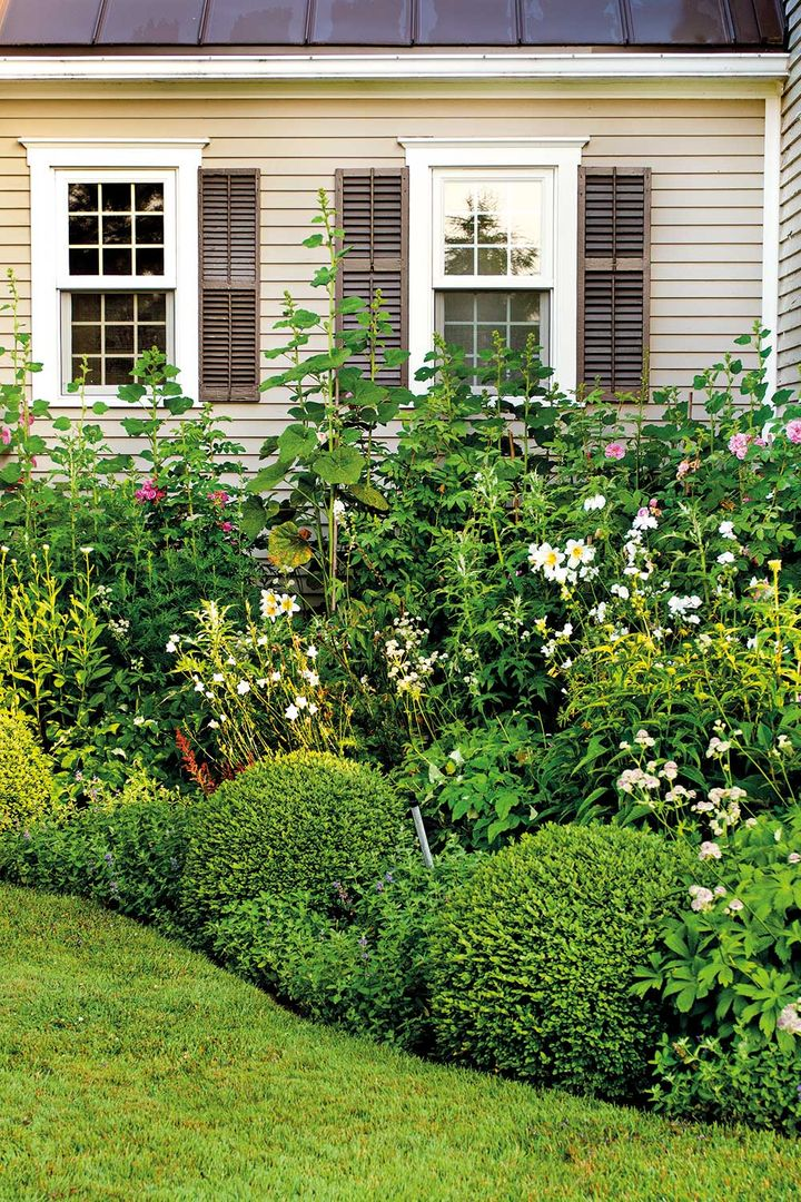 7 Old Fashioned Flowering Plants You Need In Your Garden Home Beautiful Magazine Australia,Black Home Interior Designers