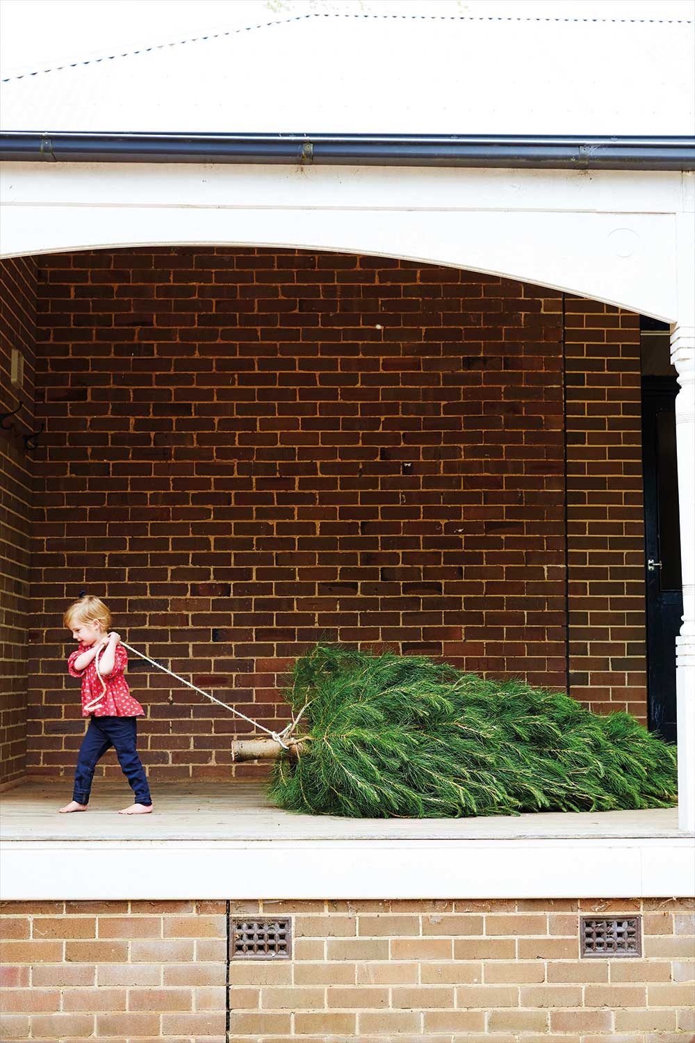 When Should You Take Down Christmas Tree.When Should You Take Down Your Christmas Tree Home