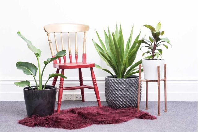 How To Upcycle Your Op Shop Finds In A Weekend Home Beautiful