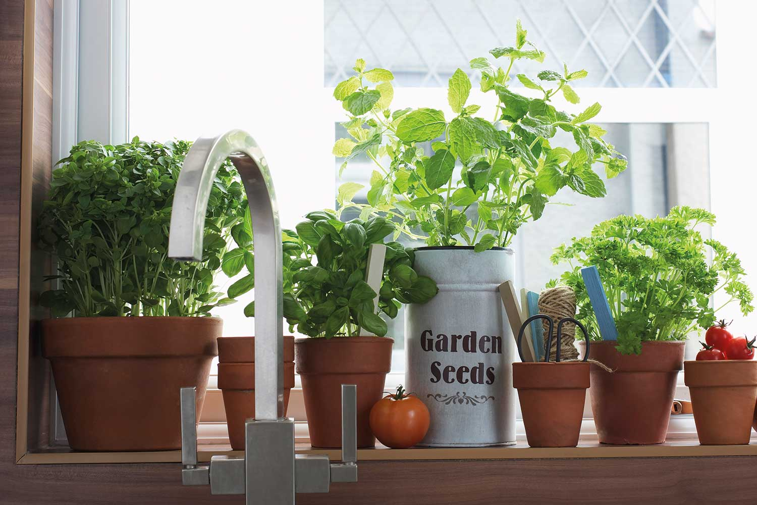 How To Start Your Own Windowsill Herb Garden Home Beautiful