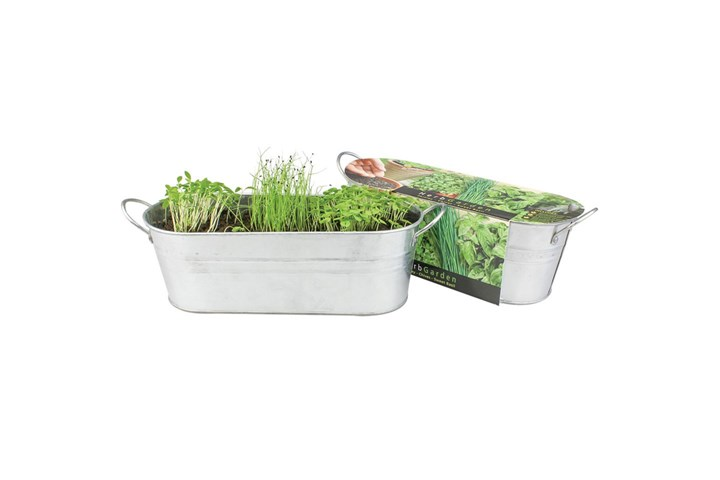 How To Start Your Own Windowsill Herb Garden Home